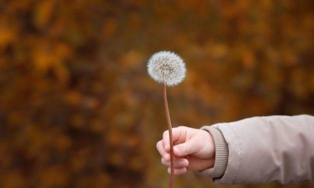 Μια απάντηση γλυκειά καταπραΰνει το θυμό, μα ο λόγος ο προσβλητικός φουντώνει την οργή