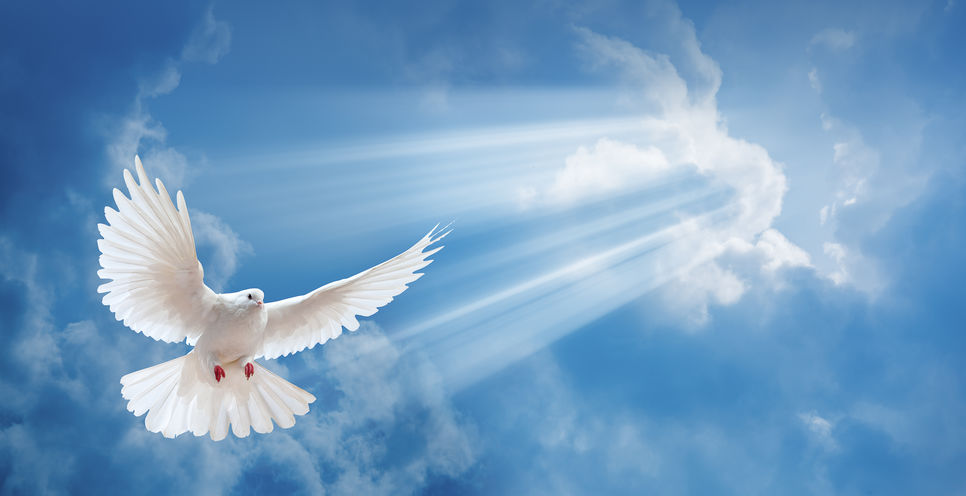 17. Πνευματικά χαρίσματα και διακονίες